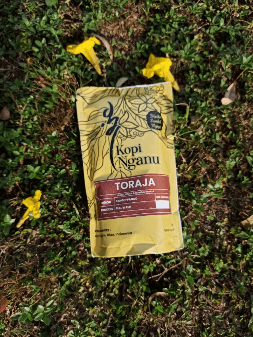kopi toraja kopi robusta kopi arabika kopi nganu 37